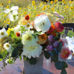 certified american grown, local flowers, slow flowers, field to vase, field to vase dinner tour, summer flowers