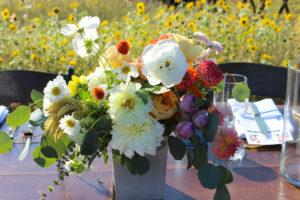 certified american grown, local flowers, slow flowers, field to vase, field to vase dinner tour, summer flowers