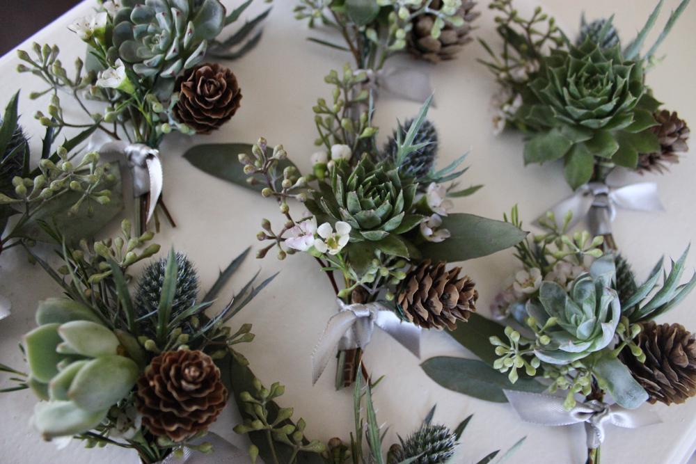 succulents, evansville florist
