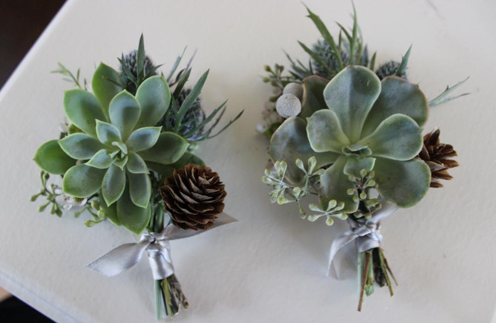 succulents, evansville florist, evansville wedding, wedding flowers